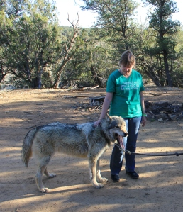 Me petting Zoeroo, Gray Timber Wolf up at our cabin, Wild Spirit Wolf Center He's been used in some promo for Game of Thrones